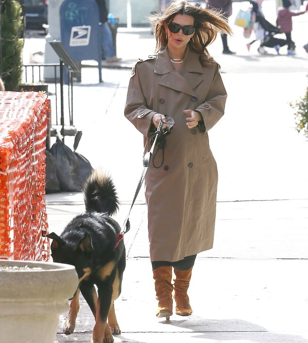 Emily Ratajkowski wearing narrow burnt orange mid calf boots with, heel