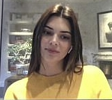Kendall Jenner rocking a Comfortable Bright yellow sweatshirt with full sleeves and a crew neck