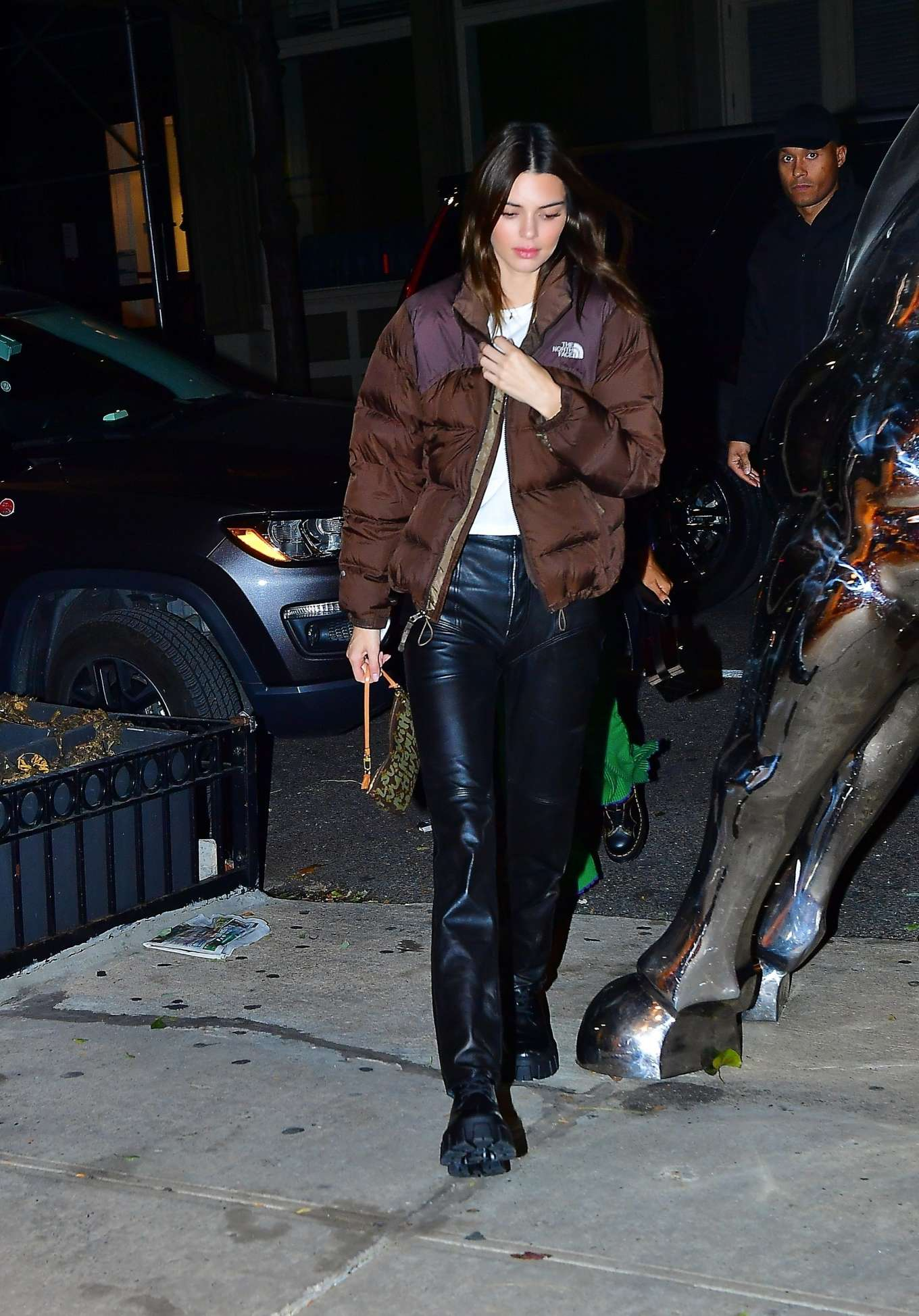 Kendall Jenner donning a Brown quilted The North face puffer jacket with full sleeves, quilted and a high neck