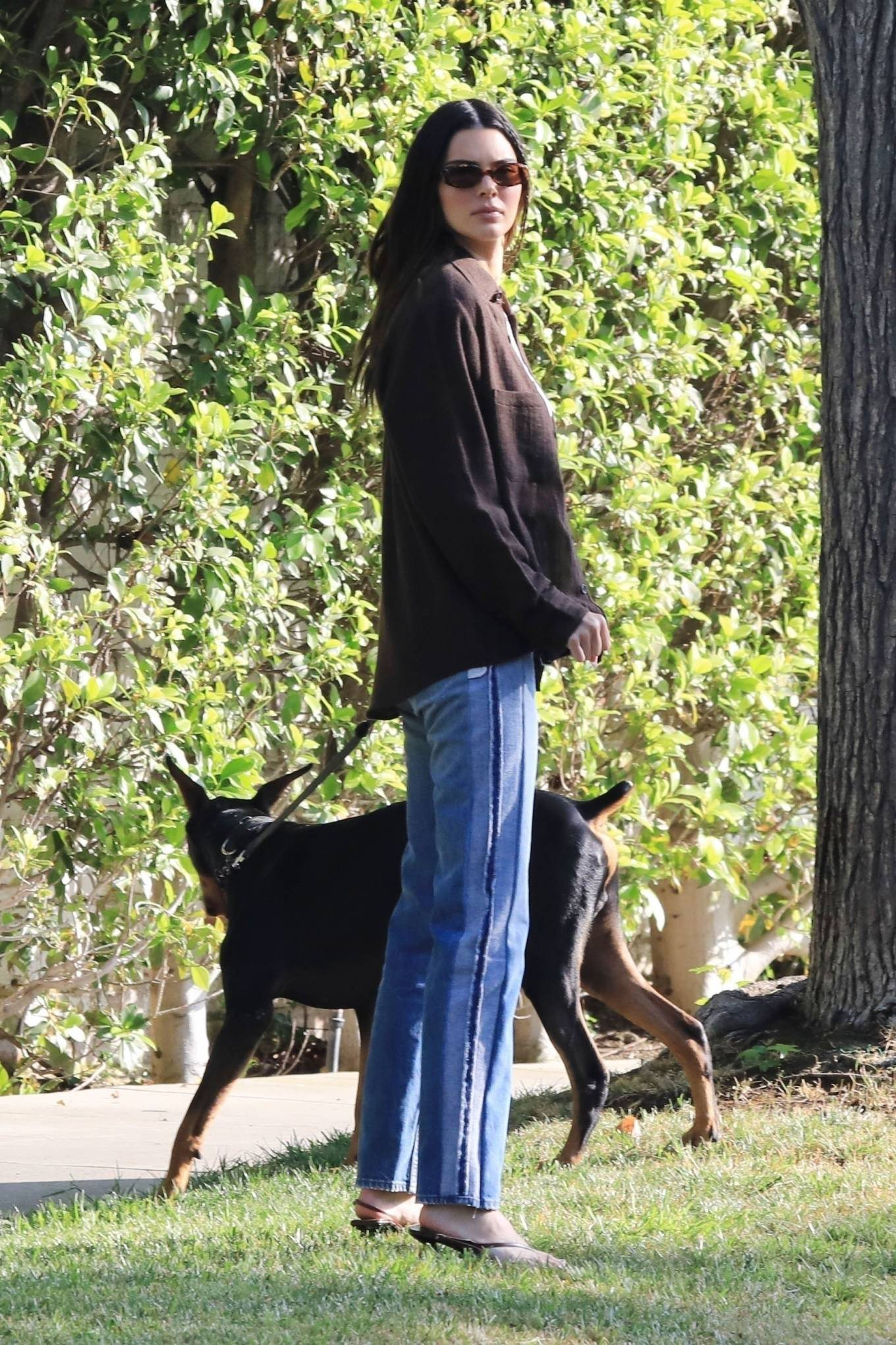 Kendall Jenner donning straight fit blue button front jeans with high rise