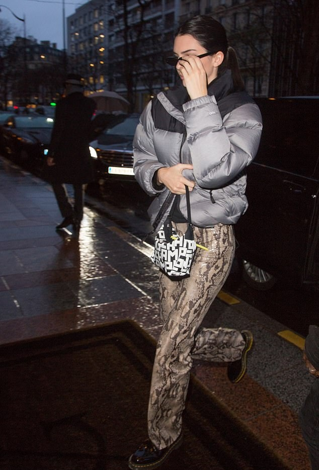Kendall Jenner wearing a voluminous grey and black puffer jacket with long sleeves and stand-up collar