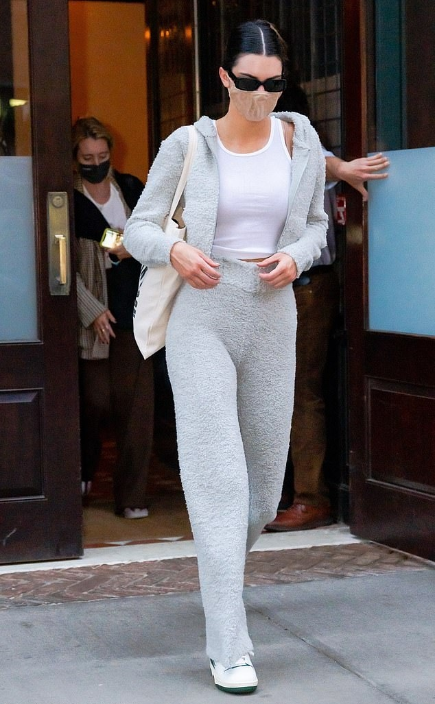 Kendall Jenner wearing a grey hooded hoodie with a knit fabric, full sleeves and side pockets
