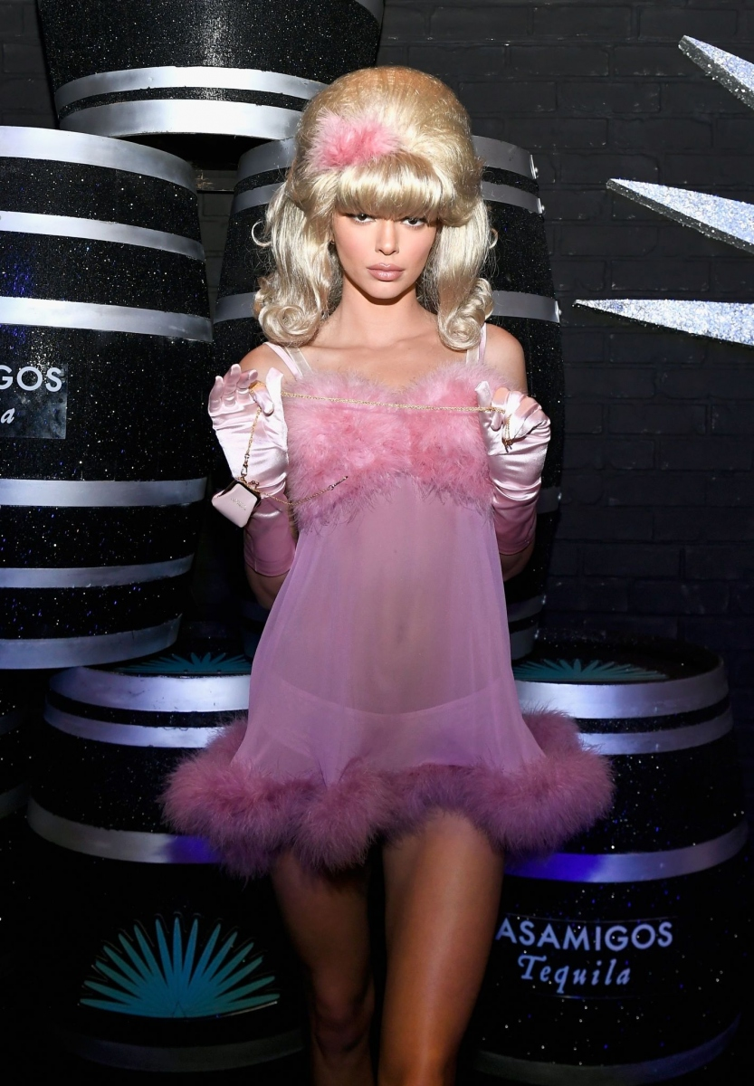 Kendall Jenner donning a sheer baby pink dress with a faux fur material, a sweetheart neckline, straps and flared hem