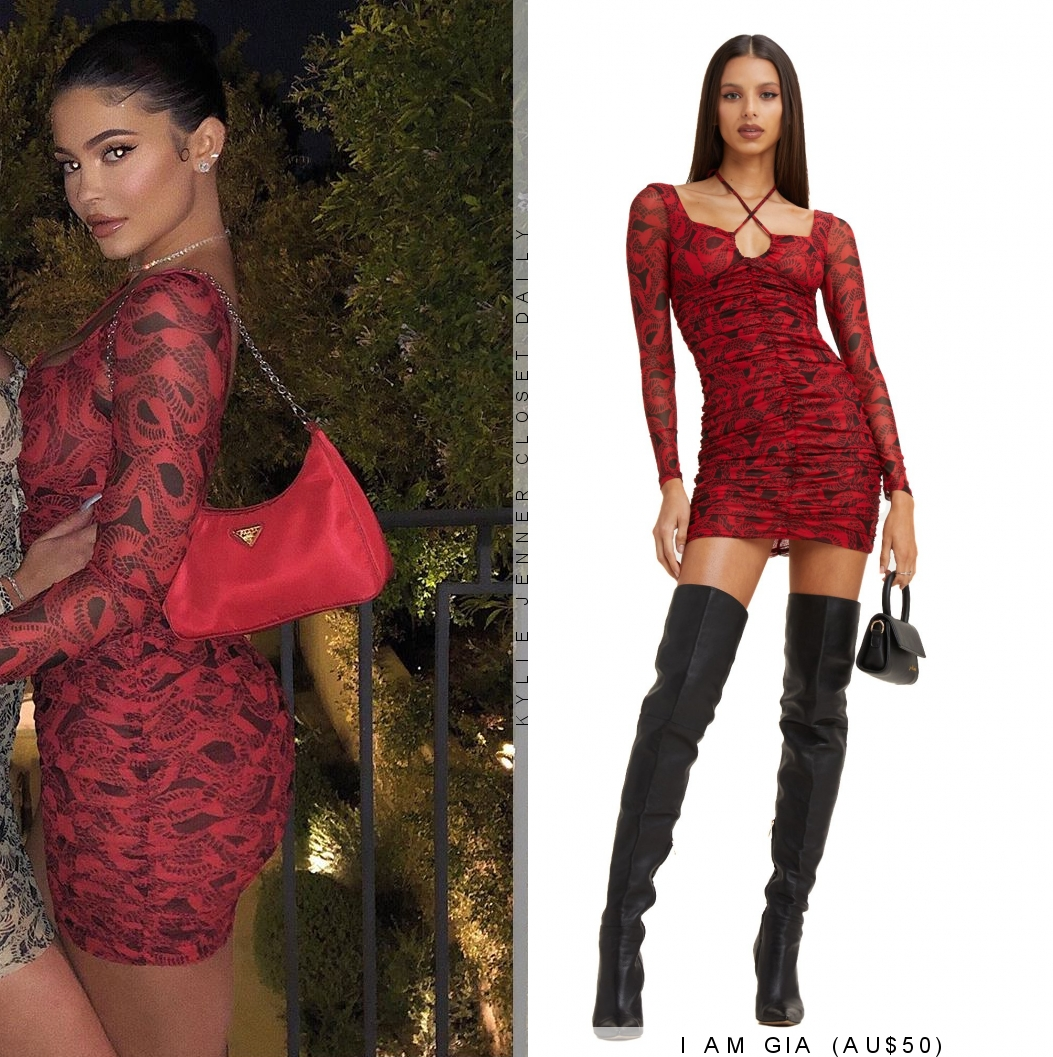 Kylie Jenner donning a Semi sheer magenta dress with a semi-sheer fabric and full sleeves