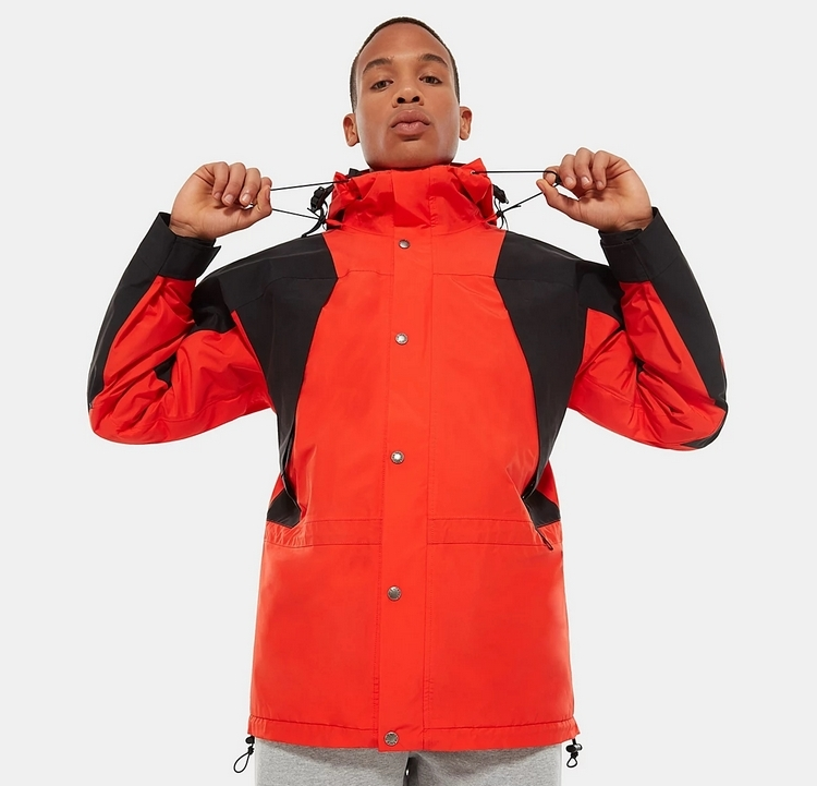 1994 Retro Mountain Light FUTURELIGHT™ Jacket by The North Face, available on thenorthface.com for $350 Emily Ratajkowski Outerwear Exact Product