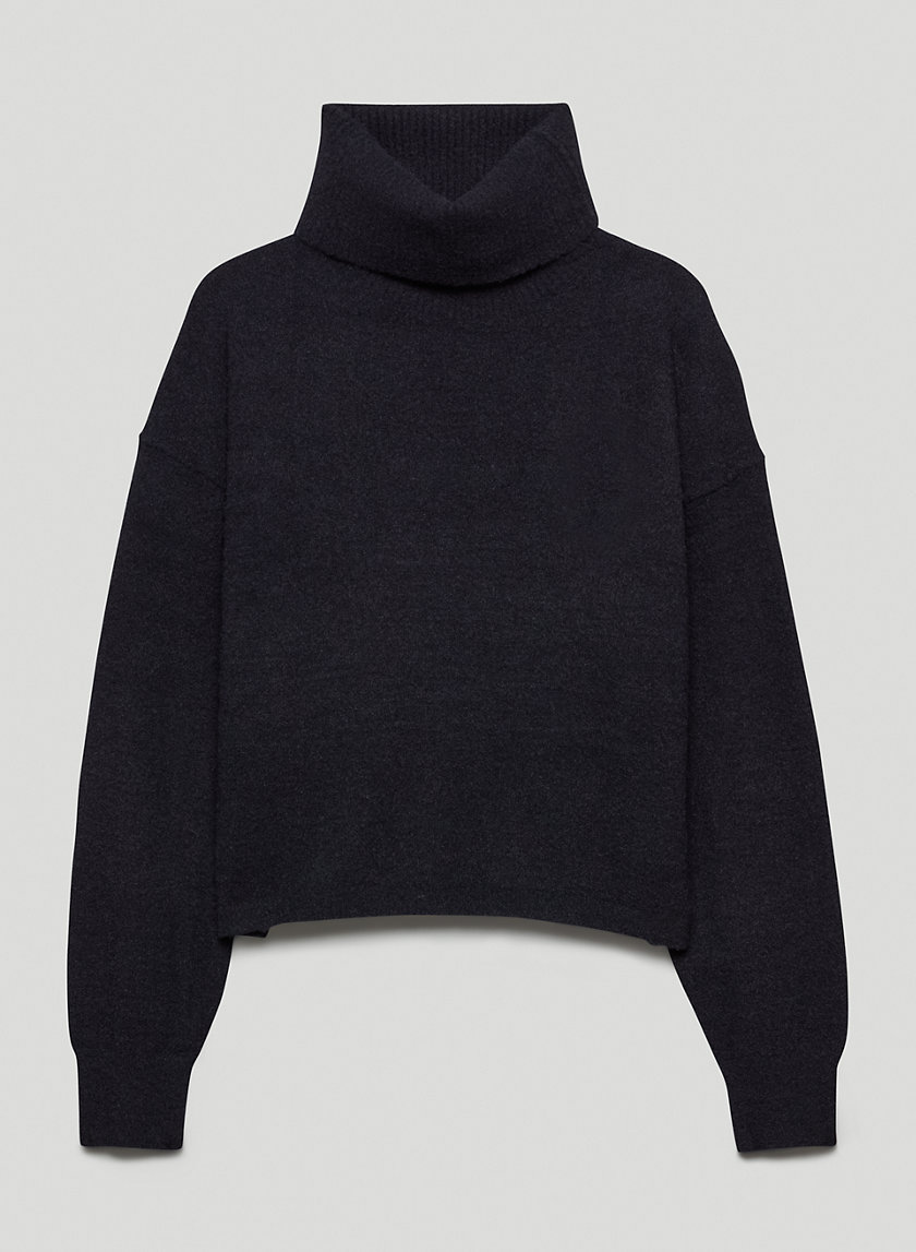 Hush Knit Cropped Turtleneck by Wilfred, available on aritzia.com for $110 Selena Gomez Top Exact Product